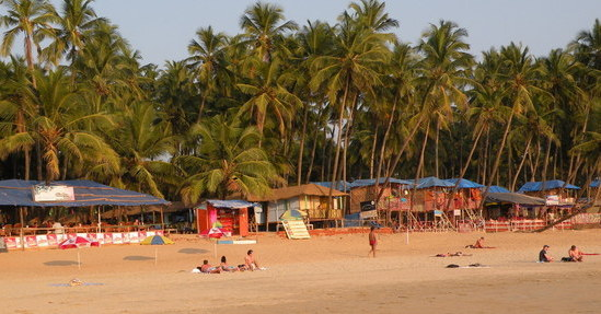 Palolem Beach, Palm trees, Beach huts