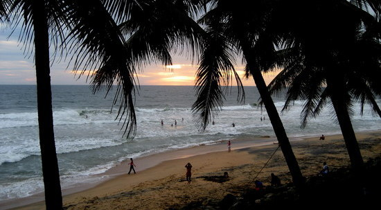 Varkala beach sunset, palm trees