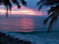 Beach pink sunset varkala