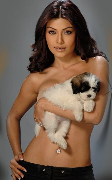 hot bollywood actress, Koena Mitra