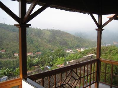 Tea county Hotel munnar, view