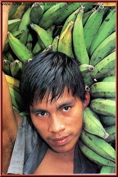 People of India man with bananas